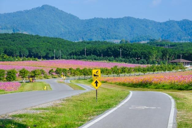 Ścieżka rowerowa dla rowerzystów