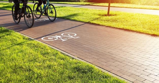 Ścieżka rowerowa w miejskim parku publicznym