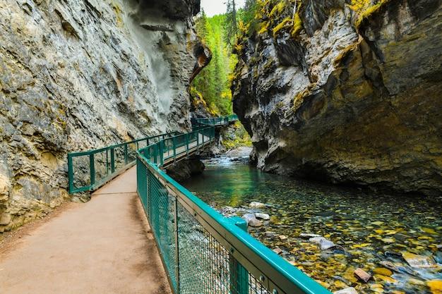 Ścieżka w kanionie johnston w parku narodowym banff albertakanada