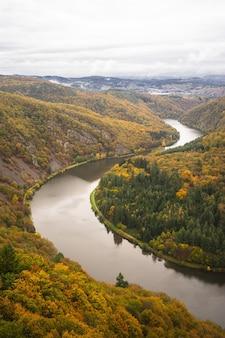 Ścieżka w koronach drzew saarschleife pod zachmurzonym niebem jesienią w niemczech