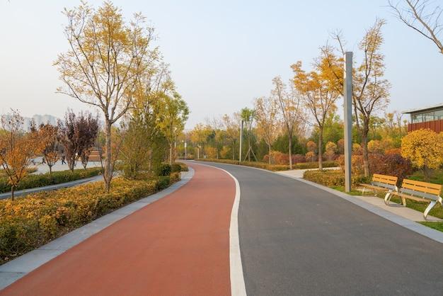 Ścieżka w parku jesienią
