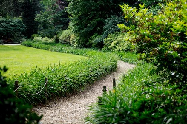 Ścieżka w parku przez krzewy i łąkę