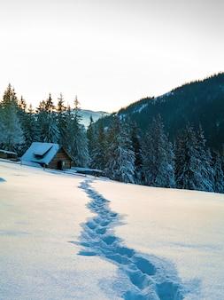 Ścieżka z odciskami stopy w śniegu w zim górach.