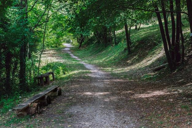 Ścieżka ze starą drewnianą ławką w parku bioróżnorodności valpolicella