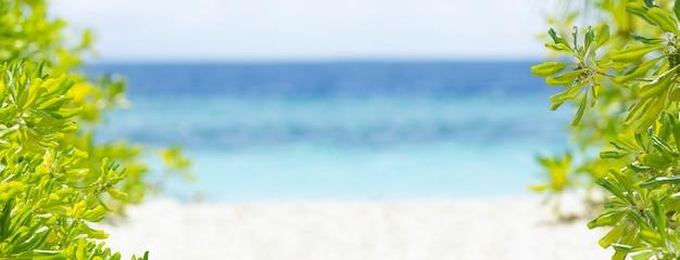 Seascape i piaszczysta plaża lato tło. niewyraźna powierzchnia wody morskiej, biały piasek i zielone tropikalne drzewo na słońcu. baner na rajskiej plaży