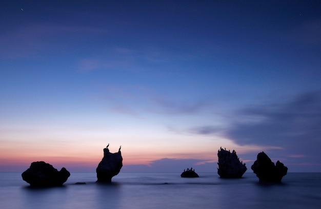 Seascape kolorowy lato. skaliste wyspy z ptakami o zachodzie słońca