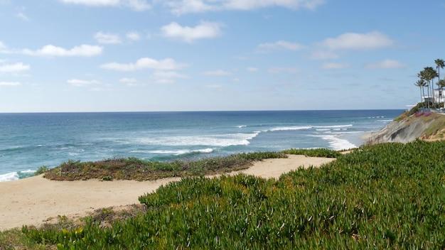 Seascape vista point california wybrzeże usa ocean fala błękitne morze fala wychodzą na lód roślina soczyste