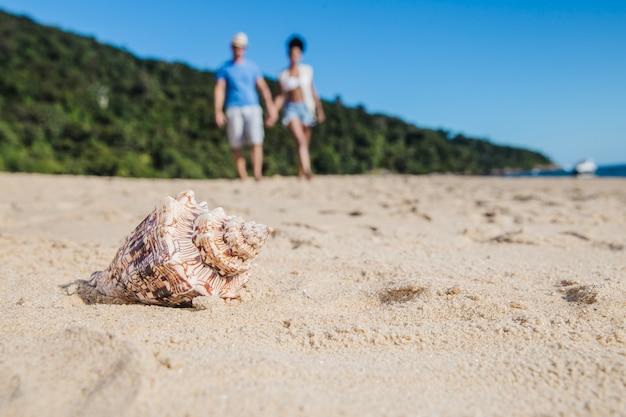 Seashell i para na plaży