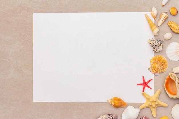 Seashells rama i biały pustego papieru prześcieradła tło. widok karty, notatki, dokumentu, widok z góry