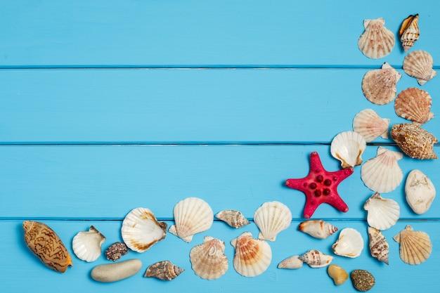 Seashells rama na błękitnym drewnianym tle