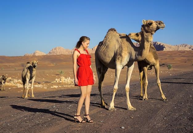 Seksowna dziewczyna pozuje z dzikimi wielbłądami na pustyni off road