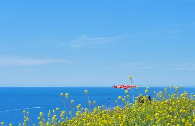 Selektywne skupienie się na powiewających flagach morza. selektywna ostrość, niewyraźne niebo. piękno przyrody, krajobraz wybrzeża morza czarnego, poziome zdjęcie
