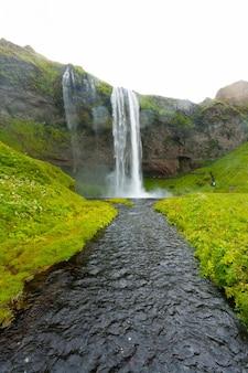 Seljalandsfoss przypada na islandię w sezonie letnim