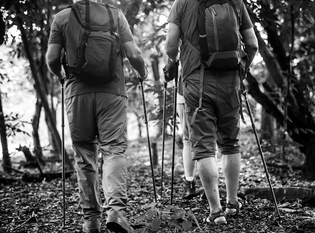 Seniorzy trekking w lesie