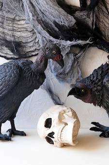 Sępy siedzą w pobliżu ludzkiej czaszki