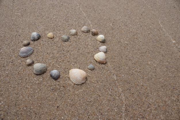 Serce z muszli na piasku nad morzem. symbol miłości.