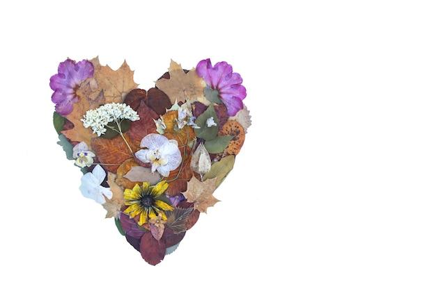 Serce z suchych kwiatów, plastrów pomarańczy i grejpfruta oraz jesiennych liści. kompozycja dekoracyjna. jesienny element projektu.