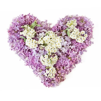 Serce ze świeżych kwiatów bzu i białych