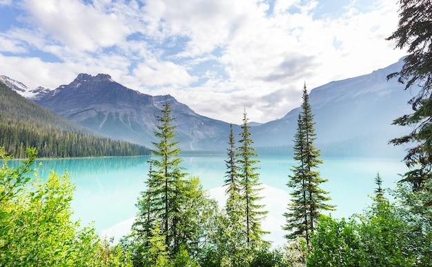Serenity emerald lake w parku narodowym yoho w kanadzie. filtr instagrama