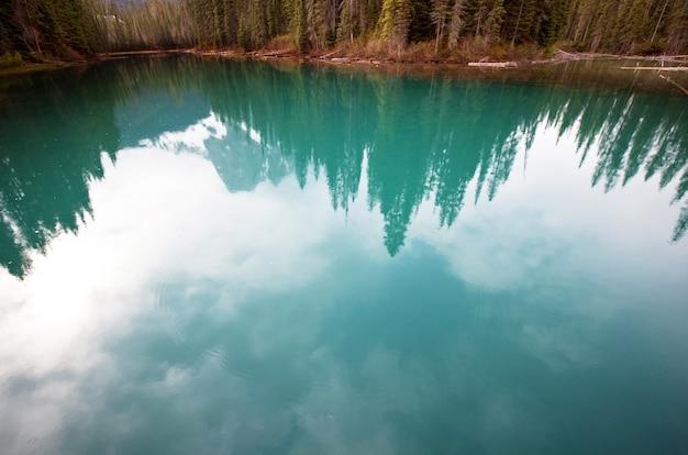 Serenity emerald lake w parku narodowym yoho w kanadzie. filtr na instagramie