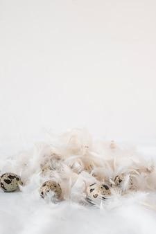 Set wielkanocni przepiórek jajka między stertą piórka