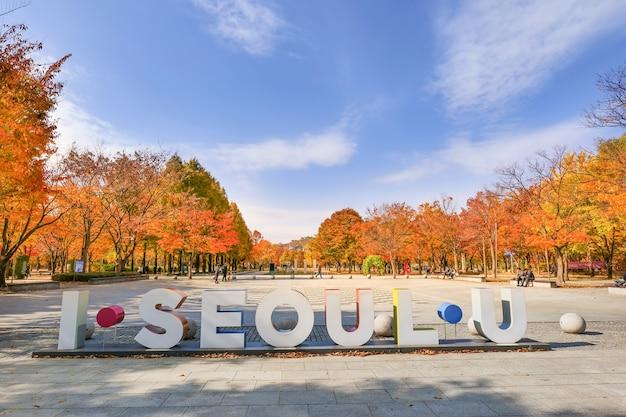 Seul korea południowa 9 listopada 2020 park leśny w seulu jesienią seul korea południowa