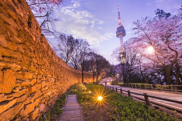 Seul tower w mieście seul w nocy widok na wiosnę z drzewa wiśni i stary mur ze światłem
