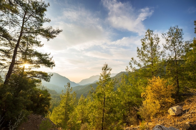 Sezon jesienny w górach kackar w regionie morza czarnego w turcji. piękny krajobraz gór.