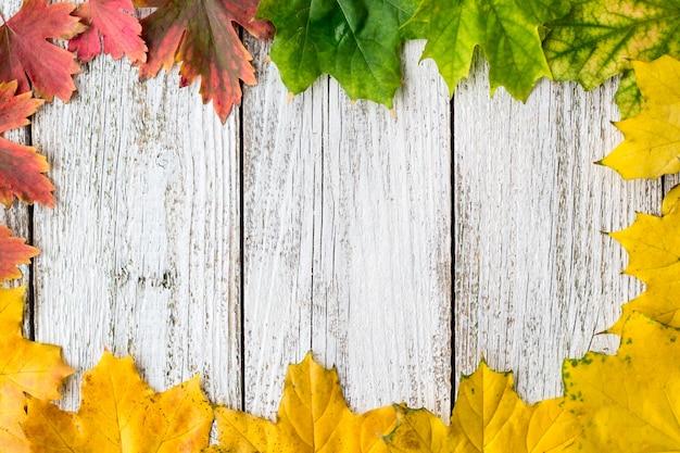 Sezonowa rama jesienni liście klonowi z gradientowym kolorem na białym drewnianym tle