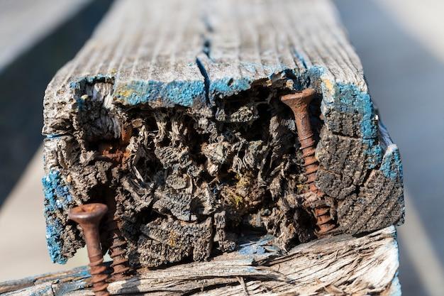 Sfotografowany z bliska stara zardzewiała śruba zabezpieczająca deskę zepsutą ławki w parku