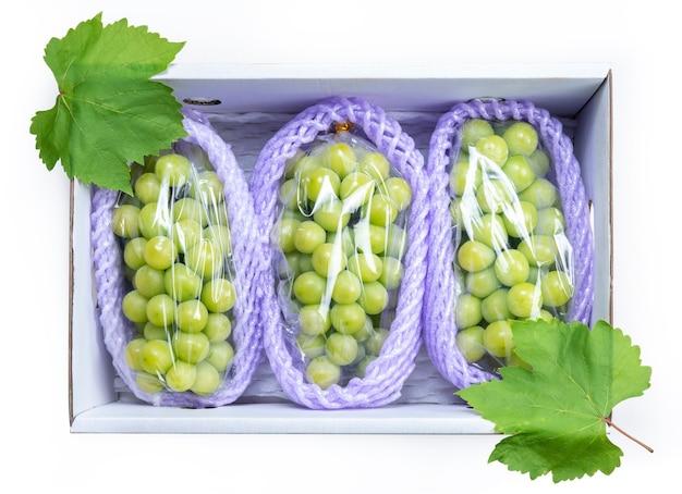 Shine muscat grape w papierowym pudełku na białym tle.