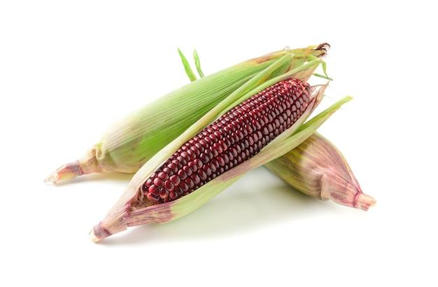 Siam ruby queen corn wyizolowanych na białym tle,