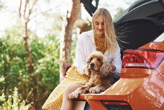 Siedzi z tyłu samochodu. kobieta z psem na świeżym powietrzu w lesie dobrze się bawi.