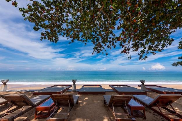 Siedzisko nad morzem i gałęzie drzew i błękitne niebo