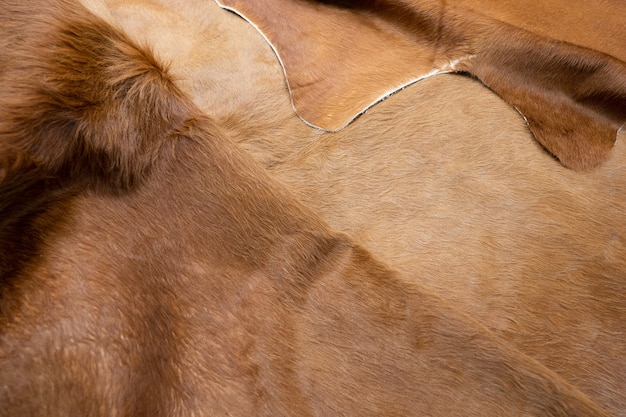 Sierść zwierzęca skóry bydlęcej futra tekstura tło. naturalna puszysta brązowa skóra bydlęca.