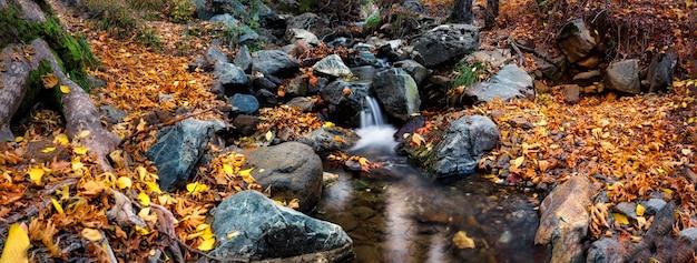 Siklawa na halnej rzece w jesień lesie