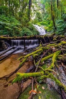Siklawa w doi inthanon parku narodowym, tajlandia