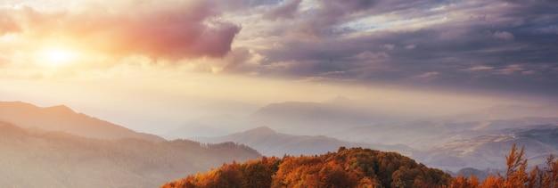 Siklawa w jesieni świetle słonecznym. świat piękna karpaty. ukraina. europa