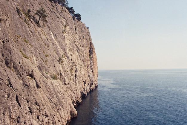 Skała na krajobrazie wybrzeża morskiego