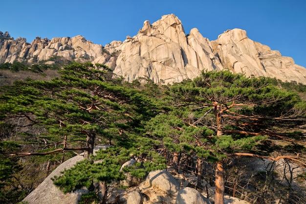 Skała ulsanbawi w seoraksan national park, korea południowa