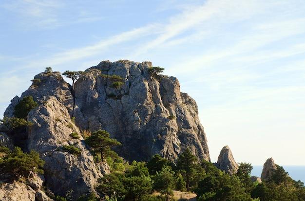 Skała z drzewami jałowca na tle błękitnego nieba (rezerwat