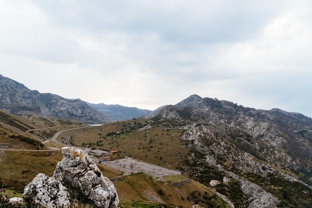 Skaliste góry pokryte drzewami w pochmurny dzień