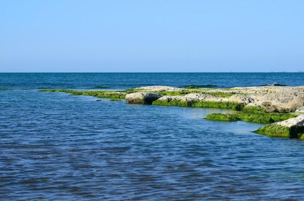 Skaliste wybrzeże morza kaspijskiego latem porośnięte glonami