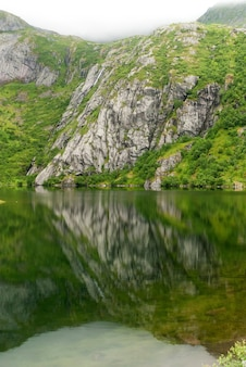 Skaliste wybrzeże we mgle nad jeziorem hamnoyvatnet, lofoty, norwegia