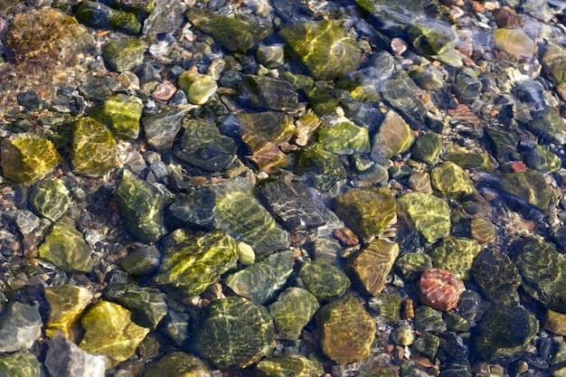 Skalne dno w czystej wodzie morskiej