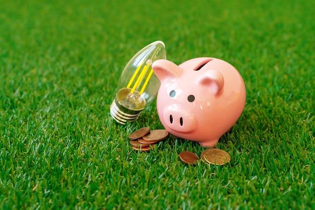 Skarbonka z energooszczędną lampą na trawie