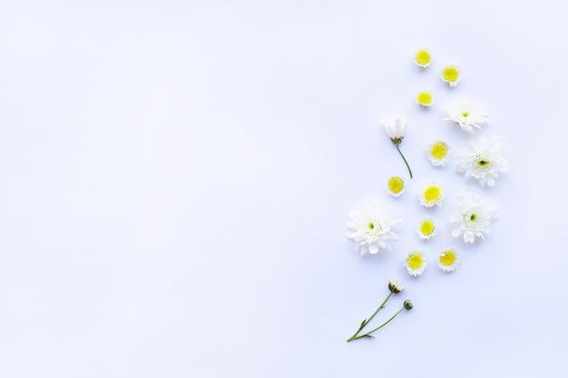Skład biali żółci kwiaty. chryzantemy na biały.