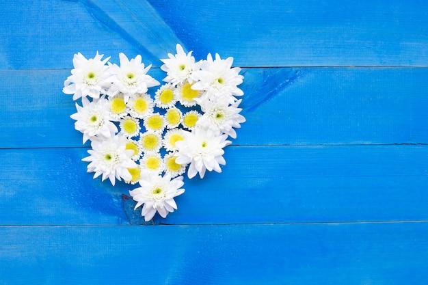 Skład biali żółci kwiaty. chryzantemy na błękitnym drewnianym tle.