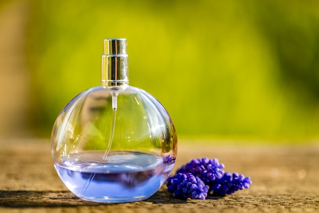 Skład błękitna pachnidło butelka, kwiaty na koloru tle i