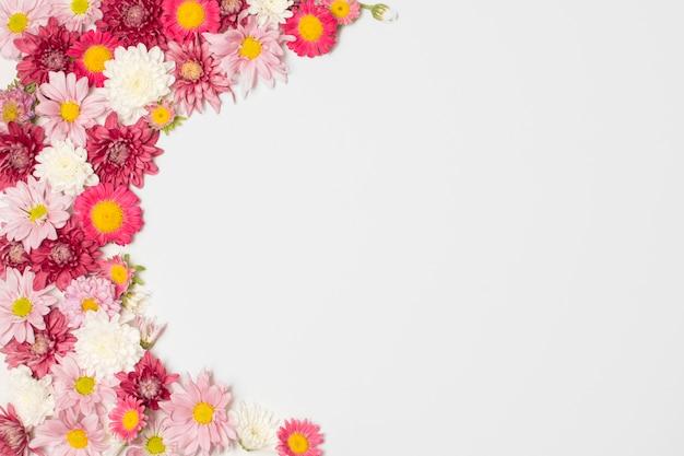 Skład cudownych kolorowych kwiatów